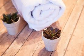 towel and succulents