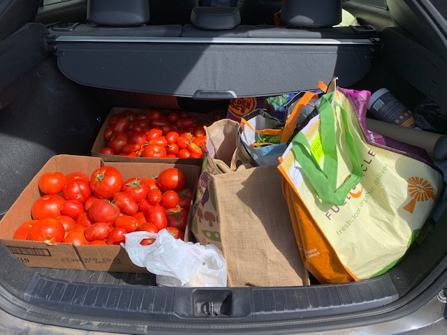 tomatoes in trunk of car